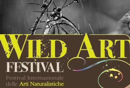 Wild Art Festival - logo