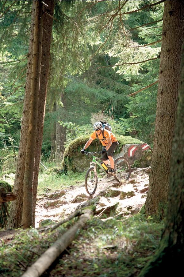 Alpe Adria BikeFestival - Franz Gerdl - Millstaetter See - Mirnock, Carinzia