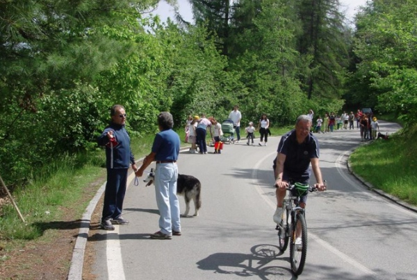 Superga Park Tour. Fonte: www.parks.it