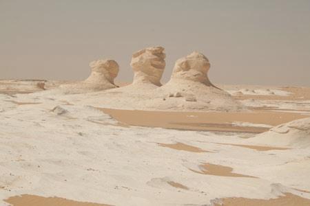 Desert Therapy, Egitto. Fonte immagine: www.carlaperrotti.com