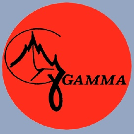 Gruppo Gamma, logo