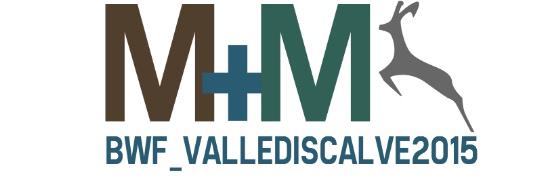 535px-Montagne-Montanari_logo