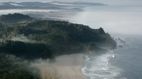 The Coast. Fonte: vimeo.com