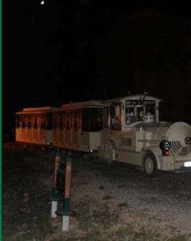 Tour in trenino in notturna nel Parco La Mandria. Fonte: Parco La Mandria