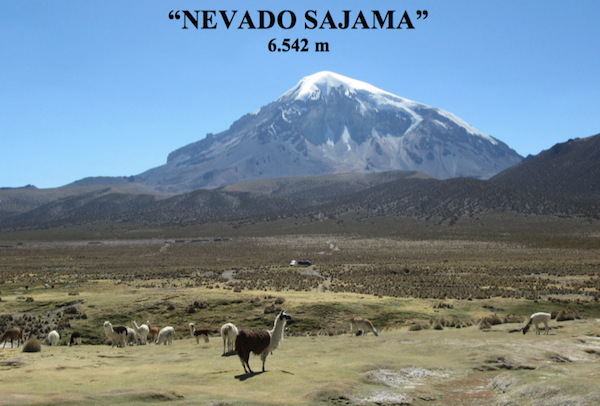 Nevado Sajama, Bolivia. Fonte: locandina serata Corradini a Mezzocorona