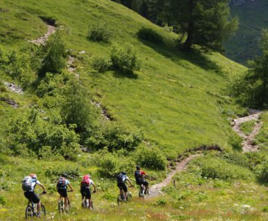 614px511-fonte-wow-ridingitaly_com