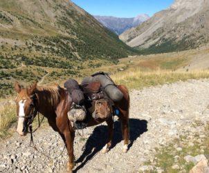 614px511-a-cavallo-in-montagna-fonte-facebook-campo-di-stelle