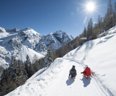 Slittino nella Valle dello Stubai, Tirolo (A). Foto: TVB Stubai Tirol/Andre Schoenherr
