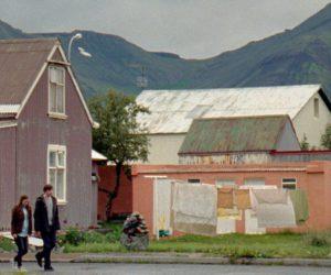 "Dal film ""Passeri"". Fonte: TFF"